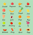 various fruits with the names vector image
