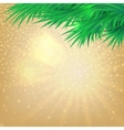 Christmas background with bokeh and the branches vector image