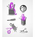 Set of elements - hairdresser vector image
