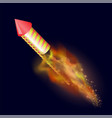burning petard with fire flame vector image