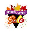Special offer off banner Super mega sale vector image
