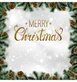 Shiny Christmas background with pine cones and vector image vector image