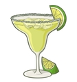 Margarita cocktail vector