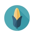 Corn flat icon with long shadow vector image