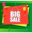 Big sale advertisement vector image vector image