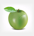 green apple with water drops - gradient mesh vector image