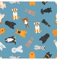 Different dogs breed seamless pattern vector image