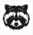 Raccoons head logo for sport club or team vector image