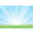 Blue sky and green grass background vector image vector image