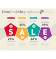 Sale infographic timeline Business web template vector image vector image
