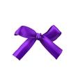 Realistic purple bow vector image