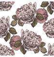 seamless ornament with hand drawn roses vector image