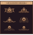 Vintage Decorative gold Elements Flourishes vector image vector image