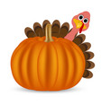 Turkey on Thanksgiving Day vector image