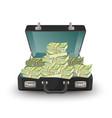 open briefcase full of money vector image