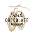 dark chocolate logo template vector image vector image
