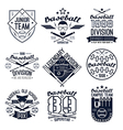College baseball team emblems vector image