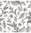 pattern flora leaves flowers vector image