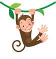 little funny monkey vector image