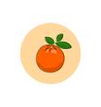 Icon Colorful Orange vector image