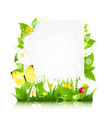 Paper With Flowers Leaves And Ladybug vector image