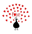 Peacock Open red heart set tail Word Love text vector image