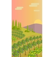 Rural Landscape with Vineyard vector image