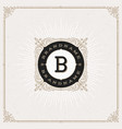 flourishes monogram logo vector image
