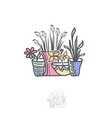 flower in pot logo design vector image