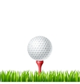 Golf ball on a tee vector image