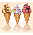 Three delicious ice cream vector image