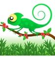 Fun chameleon baby vector image