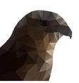 Hawk Eagle Head Polygonal vector image