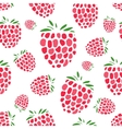 Raspberry seamless pattern for your design vector image