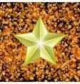 Gold Metal Star vector image