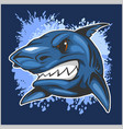 angry shark head on grunge background vector image