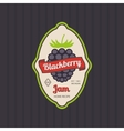 Blackberry jam retro fruit label vector image