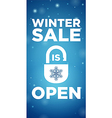 Opening winter sale and Lock with Snowflake vector image