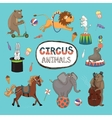 set of colorful circus animals vector image