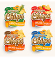 set of different chips vector image