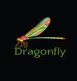colorful dragonfly designamphipterygidae on vector image