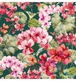 Watercolor geranium pattern vector image