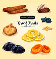 dried fruit and candied berry set vector image