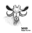 Goat symbol of 2015 New Year vector image