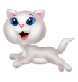 Cute white cat cartoon running vector image vector image