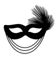 mask with feathers vector image