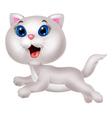 Cute white cat cartoon running vector image
