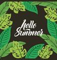 hello summer flat vector image