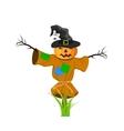 Cartoon Scarecrow Fantasy Character vector image