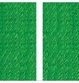 soccer field grass line vector image